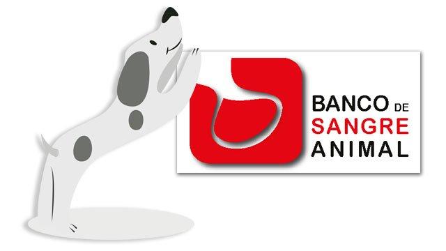 Banco de Sangre Animal Valencia hospital veterinario benipeixcar